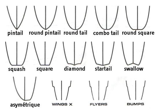 forme du tail sur un surf
